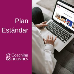 plan estándar coaching holistics